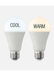 Cool and warm white lamp